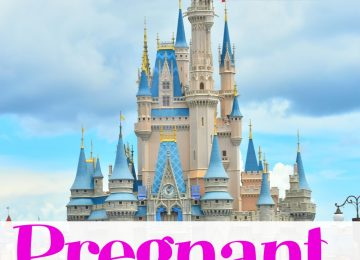 Pregnant at Disney World